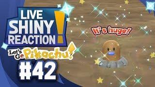 ✨SHINY DIGLETT LIVE REACTION✨ || KANTO LIVING DEX #42 - Pokémon LGPE