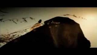 Kolkata Knight Riders IPL 2009 Music Video nk983