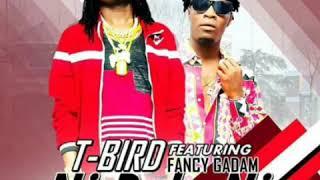 T-BIRD FT FANCY GADAM - NI DOLA NI (Official Audio)
