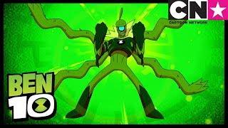 Ben 10 | Wildvine | Ben 10 Alien Profile | Cartoon Network