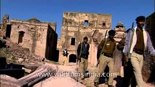 Ater Fort's darwaza, Bhind - Madhya Pradesh
