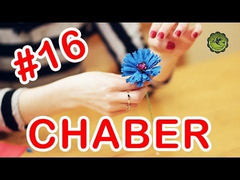 Kwiatki z bibuły 16 chaber