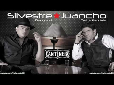 Silvestre Dangond Gracias Cantinero Vallenato 2010