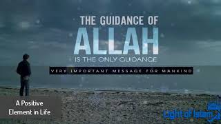 The Guidance of ALLAH   Powerful Reminder   Must Listen