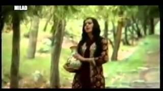 Afghan & tajik new song.mp4 mirza