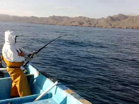 Pesca de jurel en Punta Eugenia B.C.S