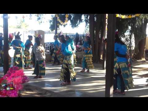 Danza de col. Emiliano Zapata Son. En La Estancia.