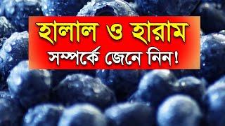 Bangla Waz হালাল ও হারাম Halal Ebong Haram Khaddo by Abdun Nur Madani - Bangladesh