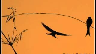 গাইলে বৈরাগীর গীত গাইও - তপন চৌধুরী (লোকগীতি)