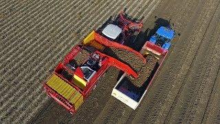 Grimme Varitron 470 Platinum Terra Trac | Potato Harvest 2017