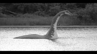 Potwór z jeziora [ Creepypasta ] [ Lektor PL ]