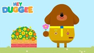 The Be Careful Badge - Hey Duggee Series 1 - Hey Duggee