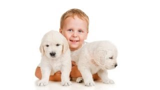 How to Play with Your Puppy | Puppy Care