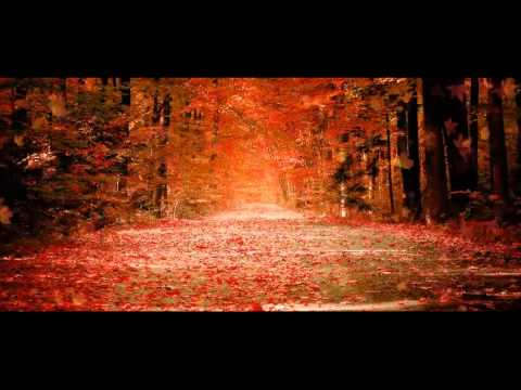 Shafiq Mureed New Farsi Sad Romantic And A Very Heart Touching Song 2013 Must Listen