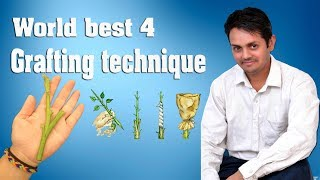 World best 4 grafting technique Hindi | How To Grafting Fruit Trees Hindi
