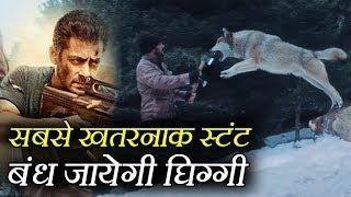 Salman Khan के नाम हुआ Bollywood का ये खतरनाक Record, सुनकर डर जायेंगे आप
