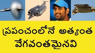 Top Fastest Things in the World in Telugu   Telugu Badi