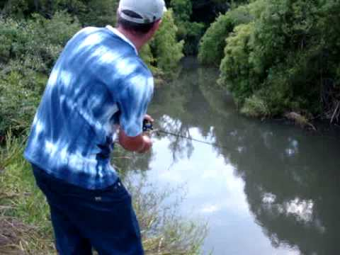 Pescaria de Traíra