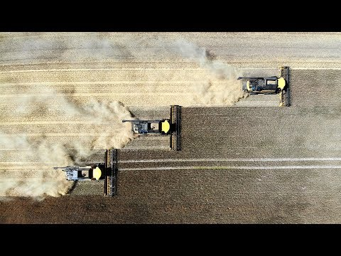 Xxx Mp4 Roggenernte In SCHWARZ GOLD║5x Case ║3x New Holland ║Agriculture Germanyy 3gp Sex