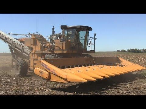 Oxbo 8435 Seed Harvester Schmitt Farms on 9 23 2012