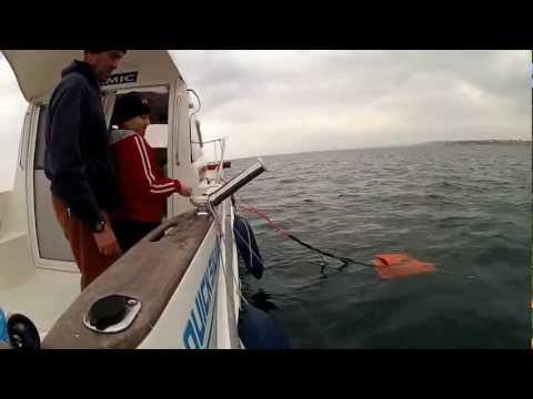 Cpt. Francesco e il suo Amico Gianni a pesca di polipi Esca Grande Pesce Grande .mp4