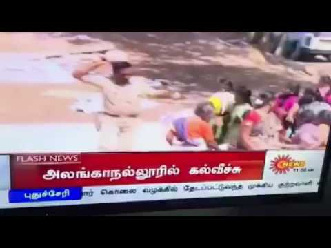 Tamil nadu political abuse in jallikattu revolution