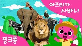 아프리카 사바나 | 핑크퐁 X 국립국악원 컬래버레이션 | 국악 동요 | 핑크퐁! 인기동요