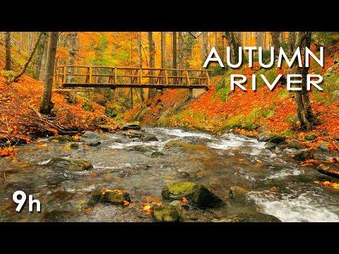 Xxx Mp4 Autumn River Sounds Relaxing Nature Video Sleep Relax Study 9 Hours HD 1080p 3gp Sex