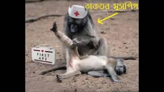 Paltalk er Kan kata mushfiq song (কান কাটা মুশফিক ) by Gatok Sombhu