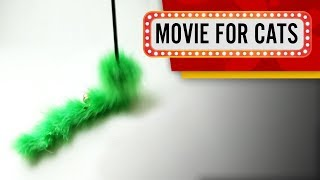 MOVIE FOR CATS - GREEN SURPISE (Entertainment Video for Cats to Watch)