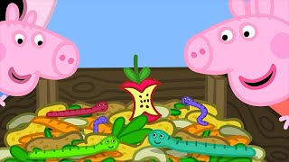 Peppa Pig English Episodes   Compost with Peppa Pig!   1 Hour   Cartoons for Children #170
