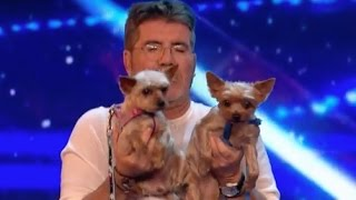 Mahny and Robbie Open a Yoga for Dog Class With The Judges! | Week 1 | Britain