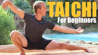 10 Tai Chi Moves for Beginners - 14 Minute Daily Taiji Routine