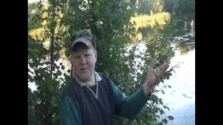 zvejys kaimietis