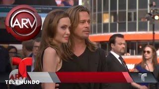 Angelina Jolie podría estar arrepentida de divorcio | Al Rojo Vivo | Telemundo