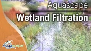 Wetland Filtration For Ponds by Aquascape