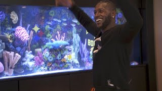 Which Is Better? ATM's Antonio Brown Fish Tank Or Their Custom Dance?