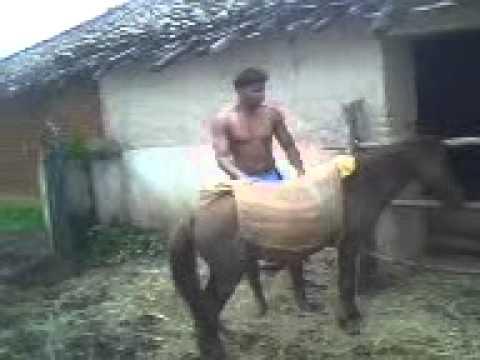 Xxx Mp4 Sandeeps Horse Riding 3gp 3gp Sex