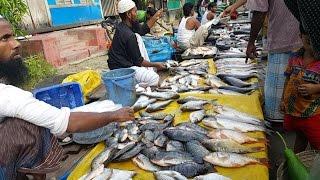 Rural Village Fish Market   Incredible Fish Market With Lots Of Village Fresh Fish