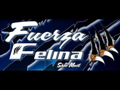 SALSA FUERZA FELINA VOL 1