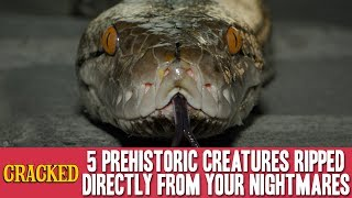 5 Prehistoric Creatures Ripped Directly from Your Nightmares