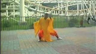Shaolin Zen Buddhist Tai Chi Chan Ming Quan -- Shi Xing Wu