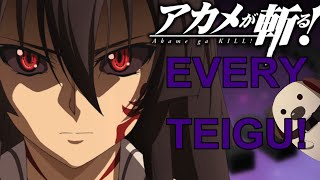 Akame Ga Kill IMPERIAL ARMS (ANIME ONLY) - EruptionFang