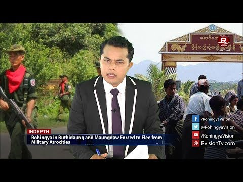 Rohingya Daily News 23 May 2017