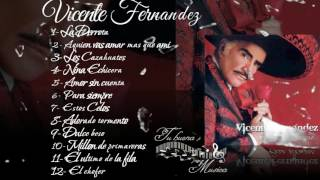 Vicente Fernandez Album para siempre