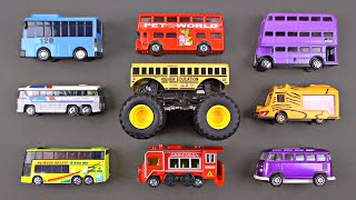 Learning Bus Types Street Vehicles for Kids - Buses by Hot Wheels Matchbox Tomica - Organic Learning