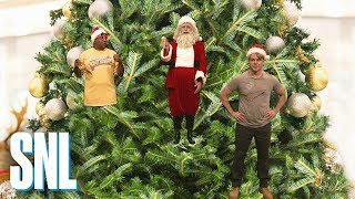 Christmas Ornaments - SNL