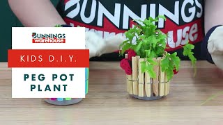 How To Make A Peg Pot Plant  - DIY At Bunnings
