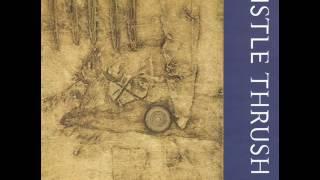 Mistle Thrush - The Honey Trip