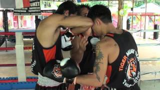 Tiger Muay Thai Techniques: Parry Jab followed by elbow strike